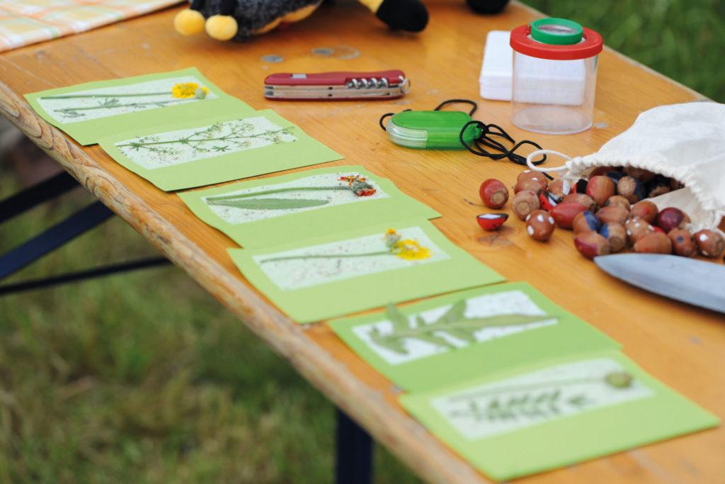 Auf Tisch liegen viele Bildungskonzepte, wie das Thema Artenvielfalt und Grünland, welches sowohl in der Schule als auch außerschulisch mit Kindern und Jugendlichen behandelt werden soll.
