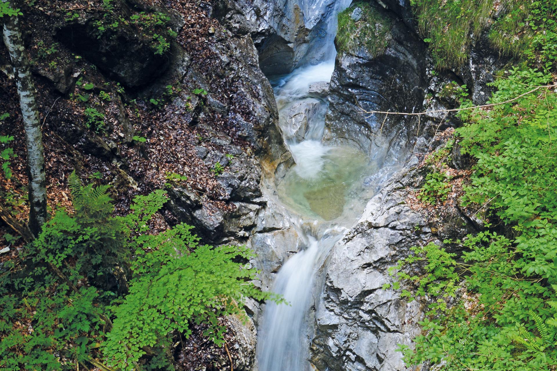 Ein Wasserfall mit Moos