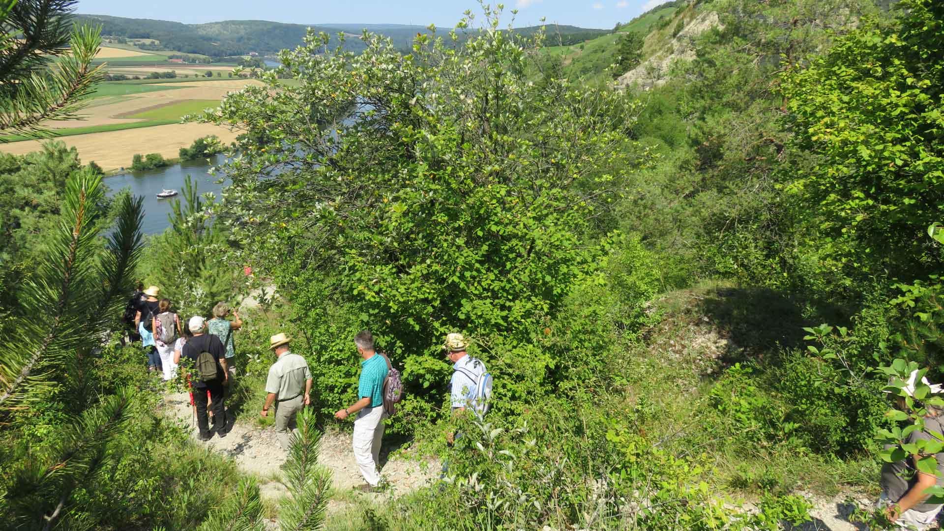 LIFE living Natura 2000 vor Ort in Unterfranken