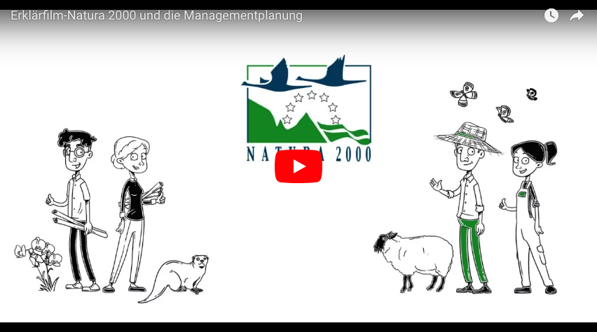 Illustration of 4 people, a sheep and a beaver linking to a YouTube Video explaining Natura 2000 (DE).