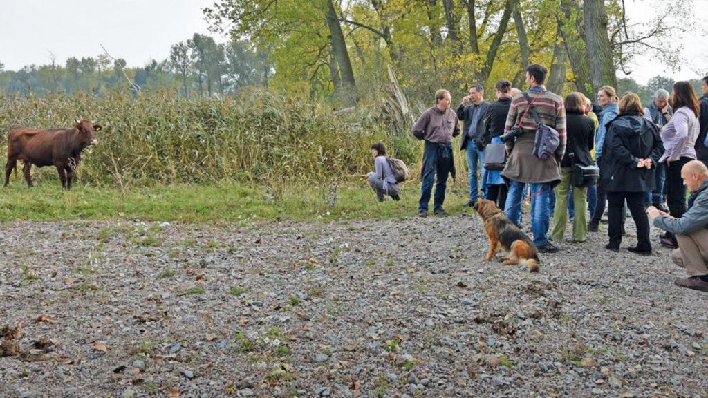 Zertifizierte Natur- und Landschaftsführer als Botschafter für Natura 2000 in Thüringen