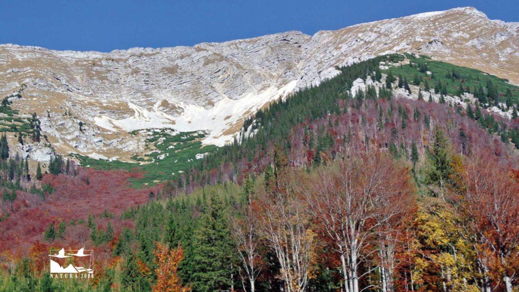 Berge in einer Herbstlandschaft