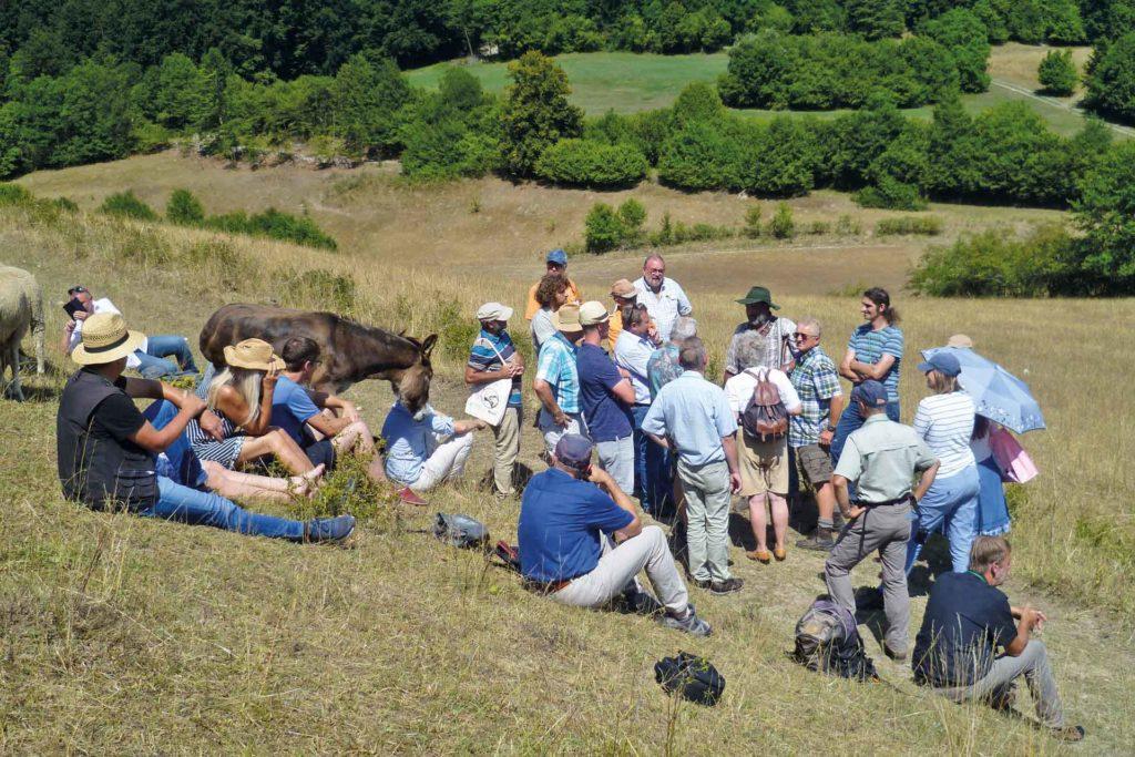 Exkursion in Oberfranken. Wandersleute mit Esel sitzen auf einem Hügel.