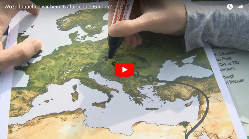 Picture of a person drawing on a map of Europe linking to a YouTube video explaining Natura 2000 (DE).