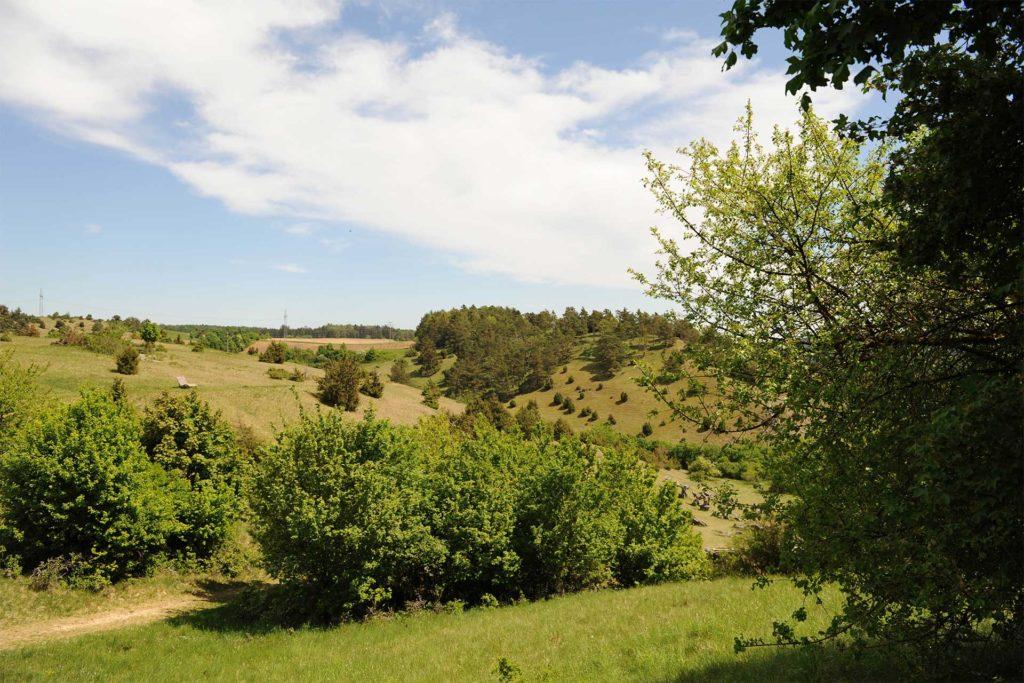 Ein Blick auf die Natur. Panorama Bild von Bayern mit blauem Himmel und grünen Wiesen.