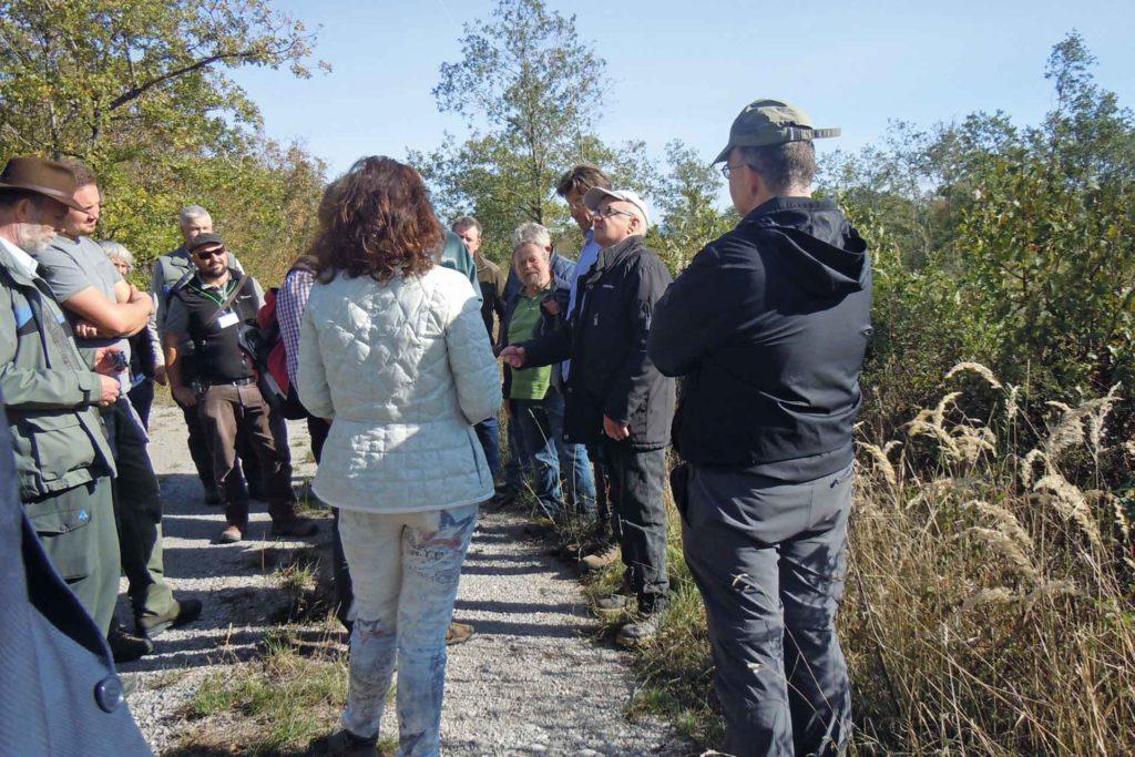 Exkursionen in die Nieder- und Mittelwälder der Umgebung in Iphofen.