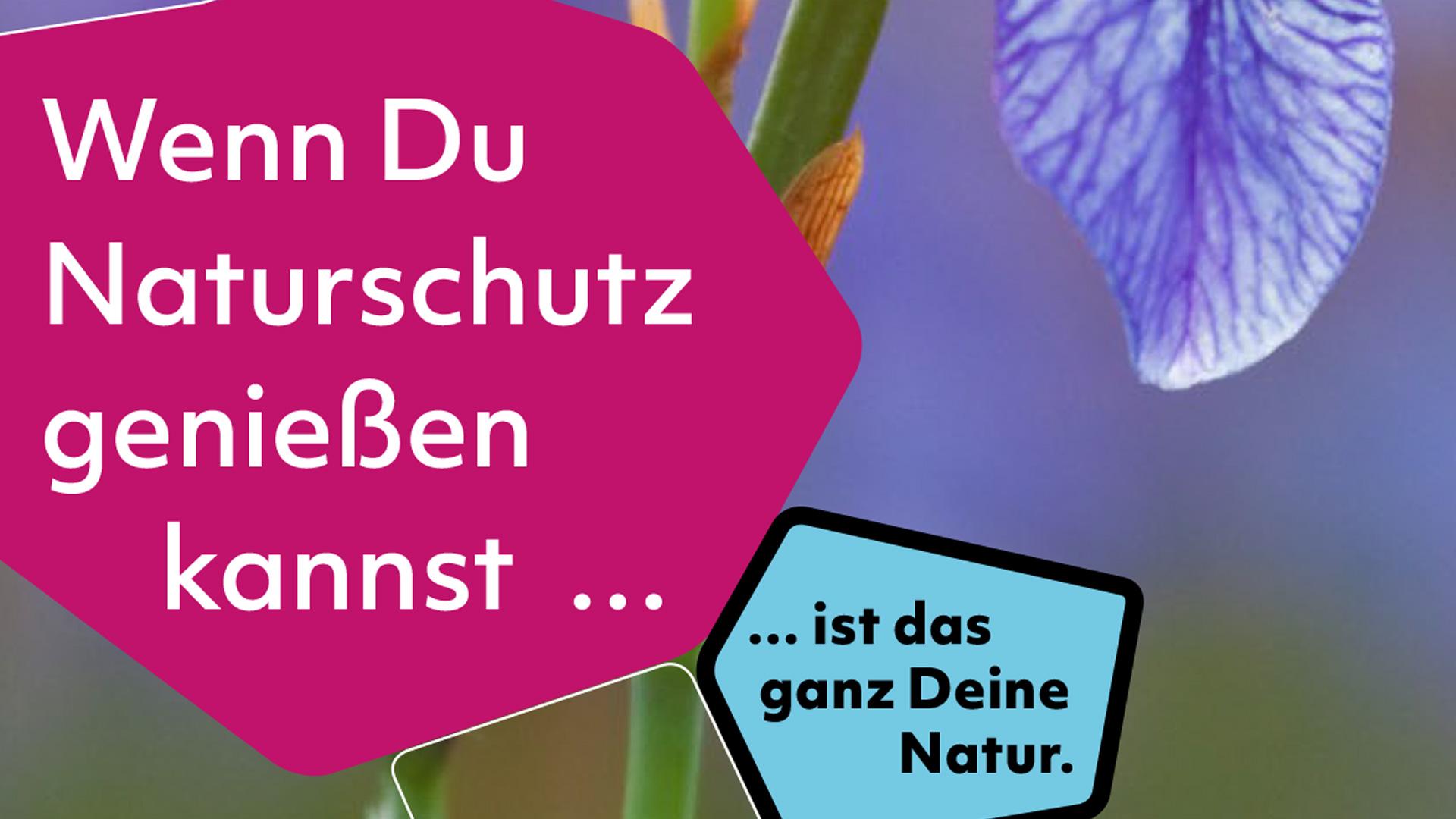Auf dem Bild sind zwei Kacheln zu sehen mit dem Text: Wenn du Naturschutz genießen kannst... ist das ganz Deine Natur.
