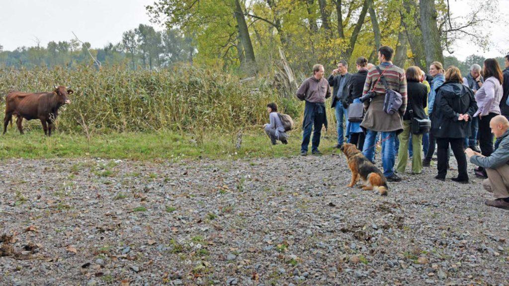 Zertifizierte Natur- und Landschaftsführer als Botschafter für Natura 2000 in Thüringen führen durch die Umwelt. Reisegruppe am wandern.