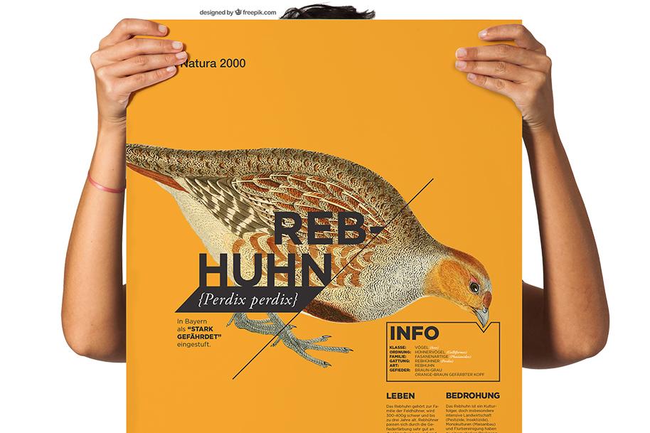 Frau hält ein Plakat mit Informationen über das Rebhuhn.