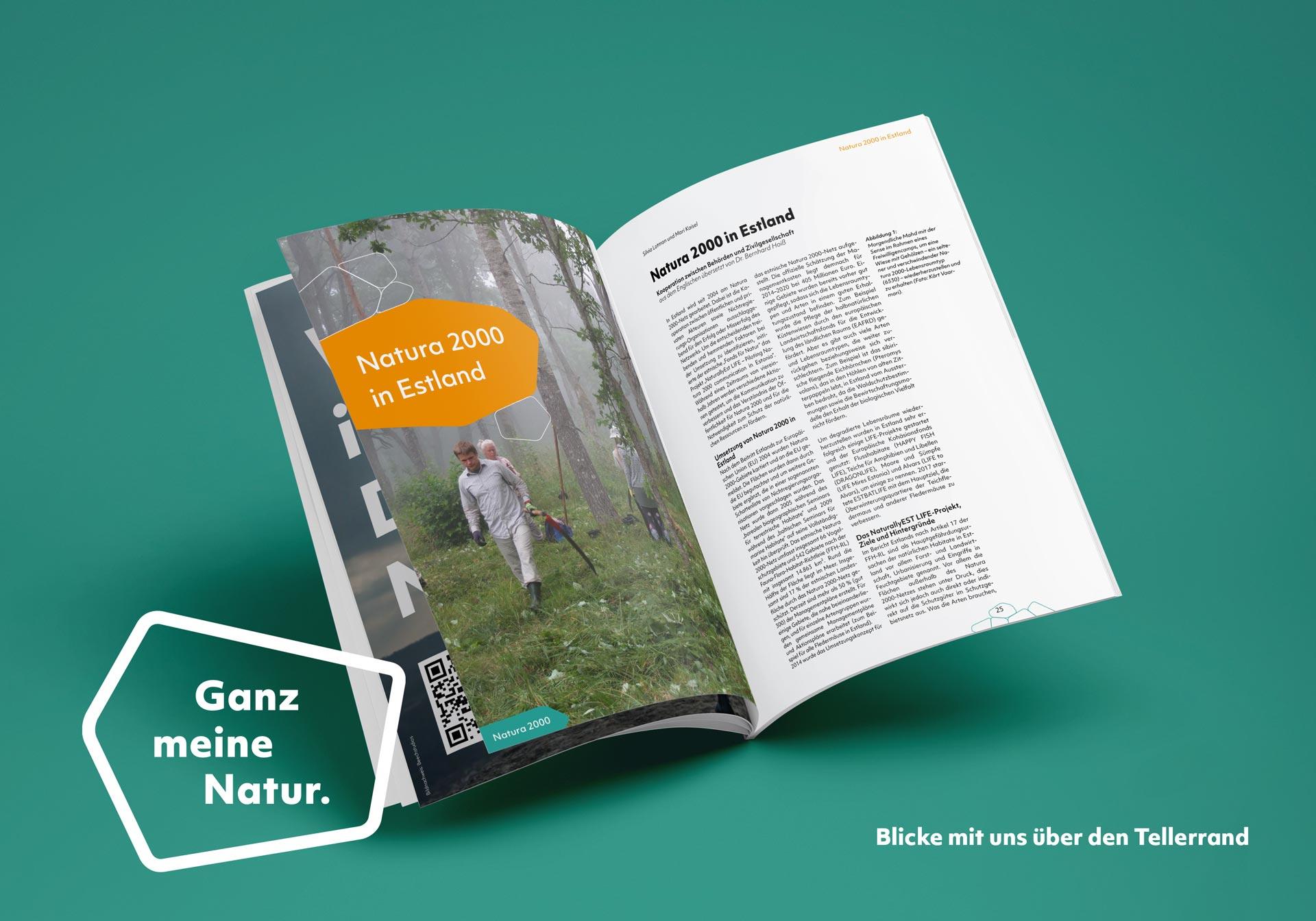 """Artikelseite des Magazins """"Blick über den Tellerrand"""""""