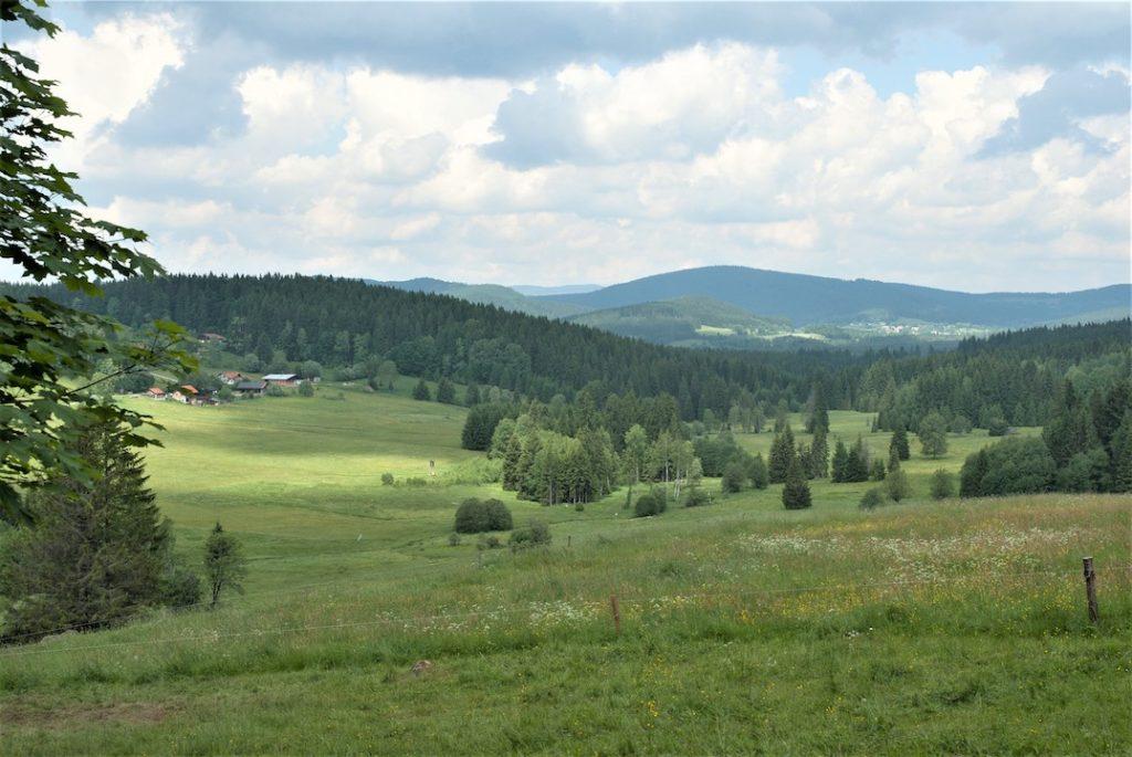 Eine Aussicht auf eine hügelige Landschaft bei schönem Wetter im Sommer. Im Hintergrund sieht bewaldete Hügel, im Vordergrund Viehweiden und Grünland. Am linken Bildrand sieht man ein kleines Dorf am Waldrand.