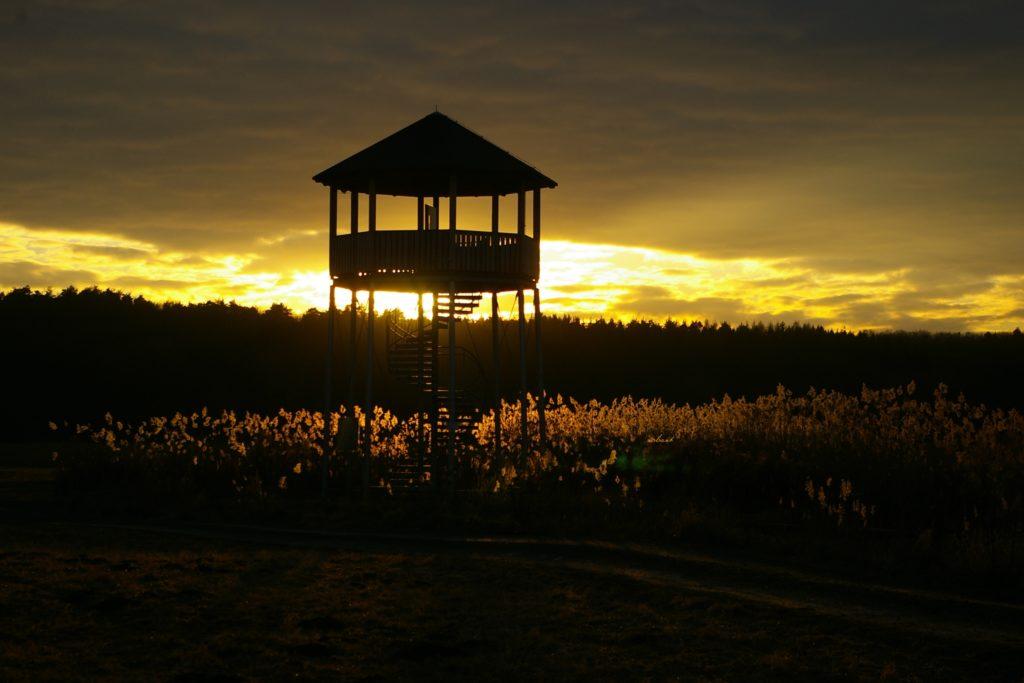 Vor dem Hintergrund eines Sonnenuntergangs ist die Silhouette eines Aussichtsturmes auf bewachsenem Boden auszumachen.