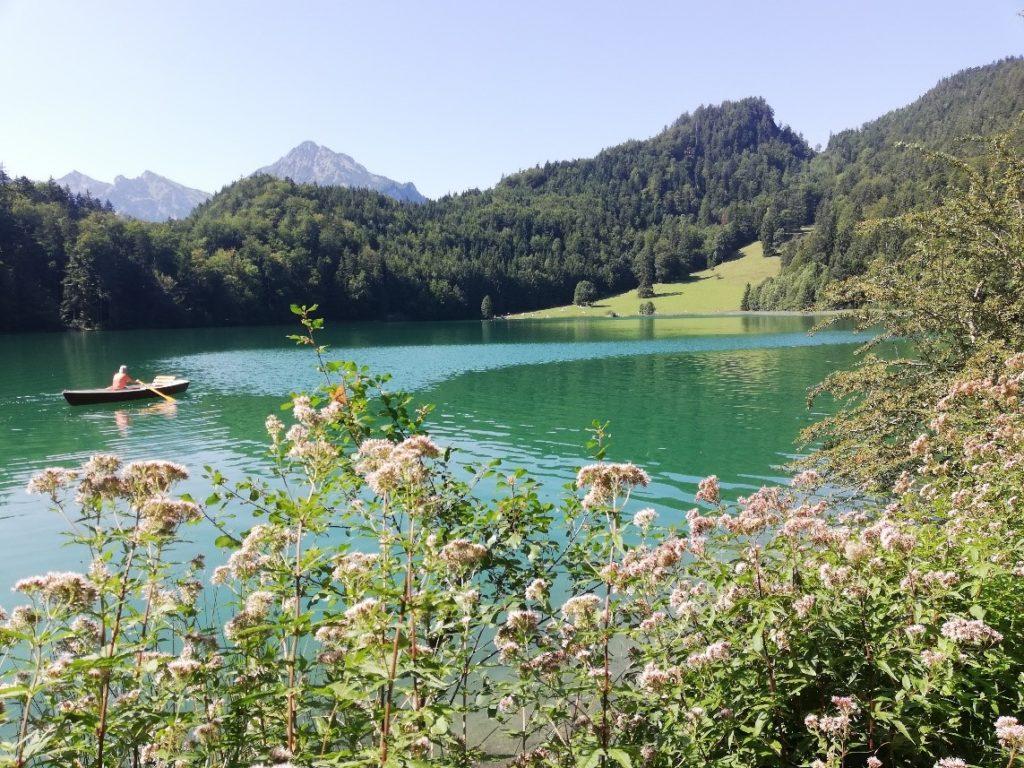 Im Bild ist ein See mit einem Ruderboot zu sehen, dahinter bewaldete Berghänge mit Nadelbäumen.