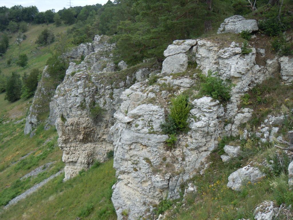 Weiß-graue Felsen, die steil nach unten abfallen. Oberhalb der Felsen schließt sich Baumbewuchs an.