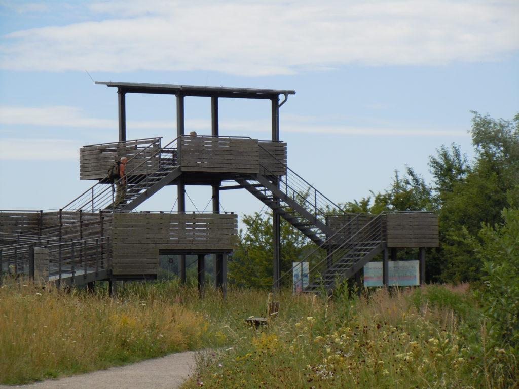 Ein großer Vogelbeobachtungsturm aus Holz. Auf den Turm mit Dach führen zwei Treppen, von dort kann die Vogelwelt beobachtet werden, ohne diese zu stören.
