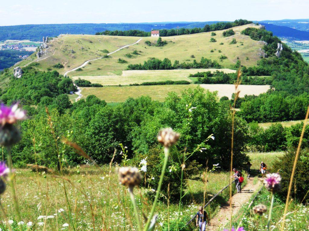Auf dem Bild ist ein Berg mit einer flachen Kuppe zu sehen. Der Berg ist im oberen Bereich unbewaldet, im unteren und seitlichen Bereich ist er bewaldet.