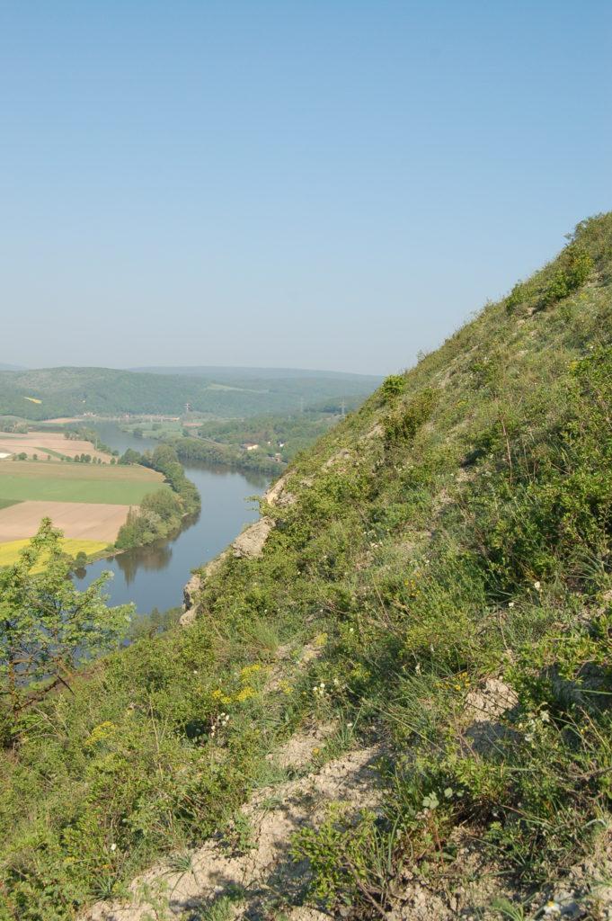 Schräge des Weinbergs mit Aussicht auf Fließgewässer und Felder, die am Horizont mit dem Himmel verschmelzen.