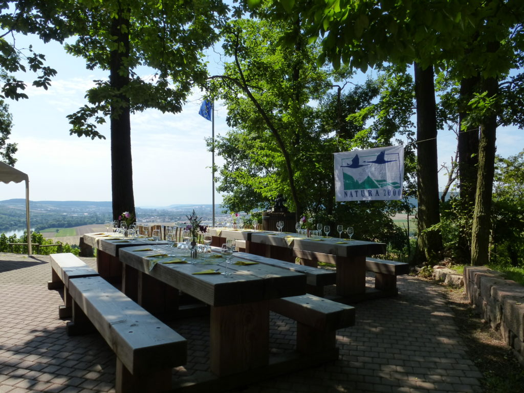 Blick auf brotzeitgeeigneten Tisch und Bänke mit umgebenden Bäumen. Läuft nach hinten in einer eher niedrigen Landschaft aus.
