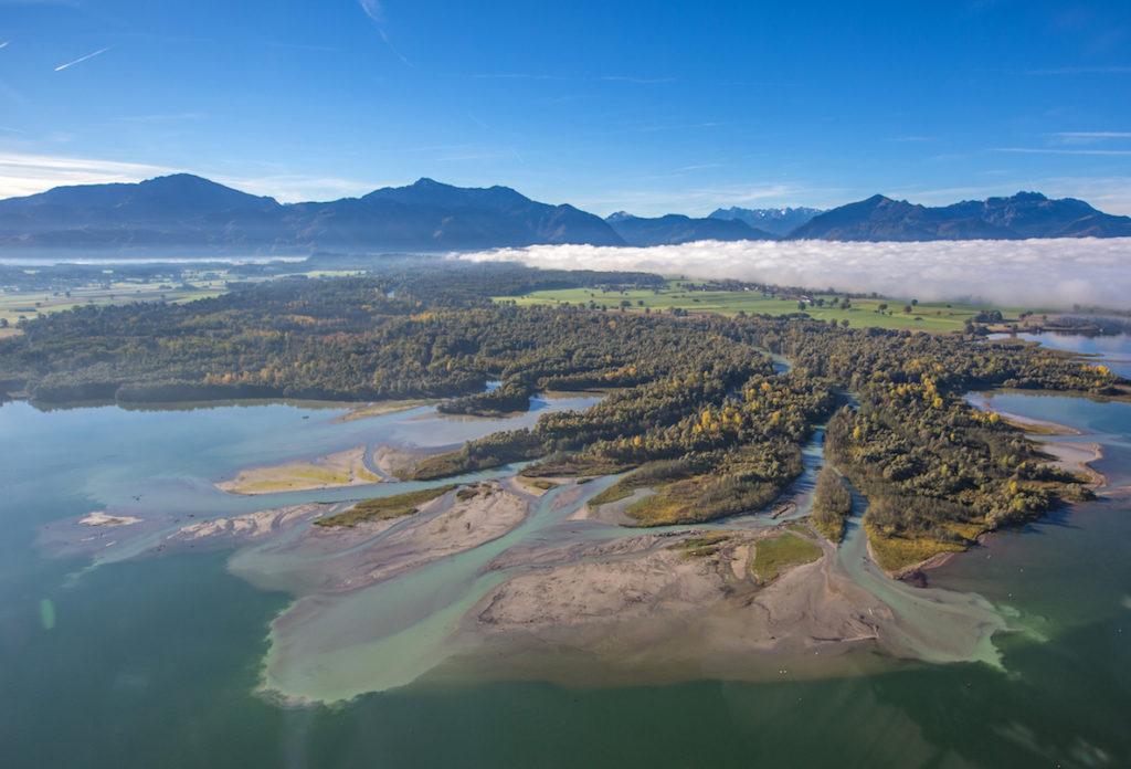 Die Mündung des Flusses Tiroler Achen in den Chiemsee. Der Fluss teilt sich in viele kleine Flüsse auf, die nebeneinander durch einen Wald in den See fließen. Im Hintergrund sieht man das Bergpanorama der Chiemgauer Alpen.