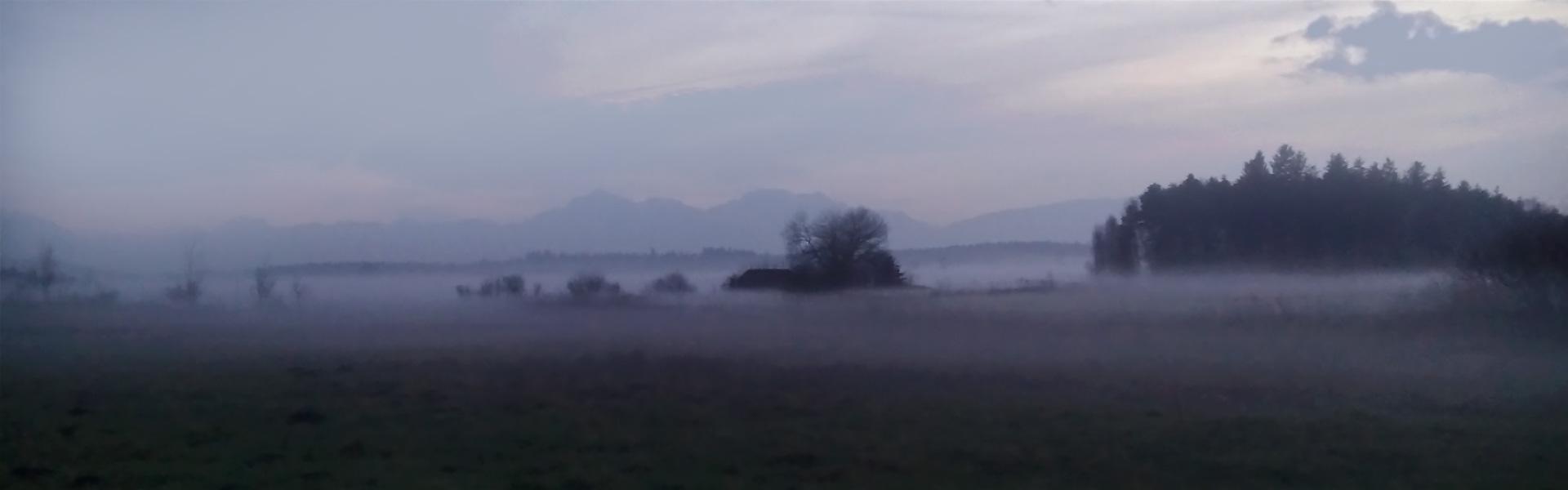 Moorlandschaft im Abendnebel, im Hintergrund Wald und Berge.