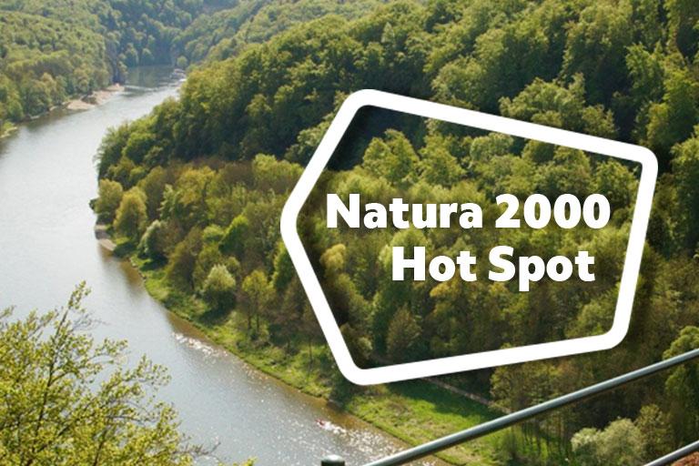 Ein Fluss mit Auwald zu beiden Seiten,. darüber die Aufschrift Natura 2000 Hot Spot