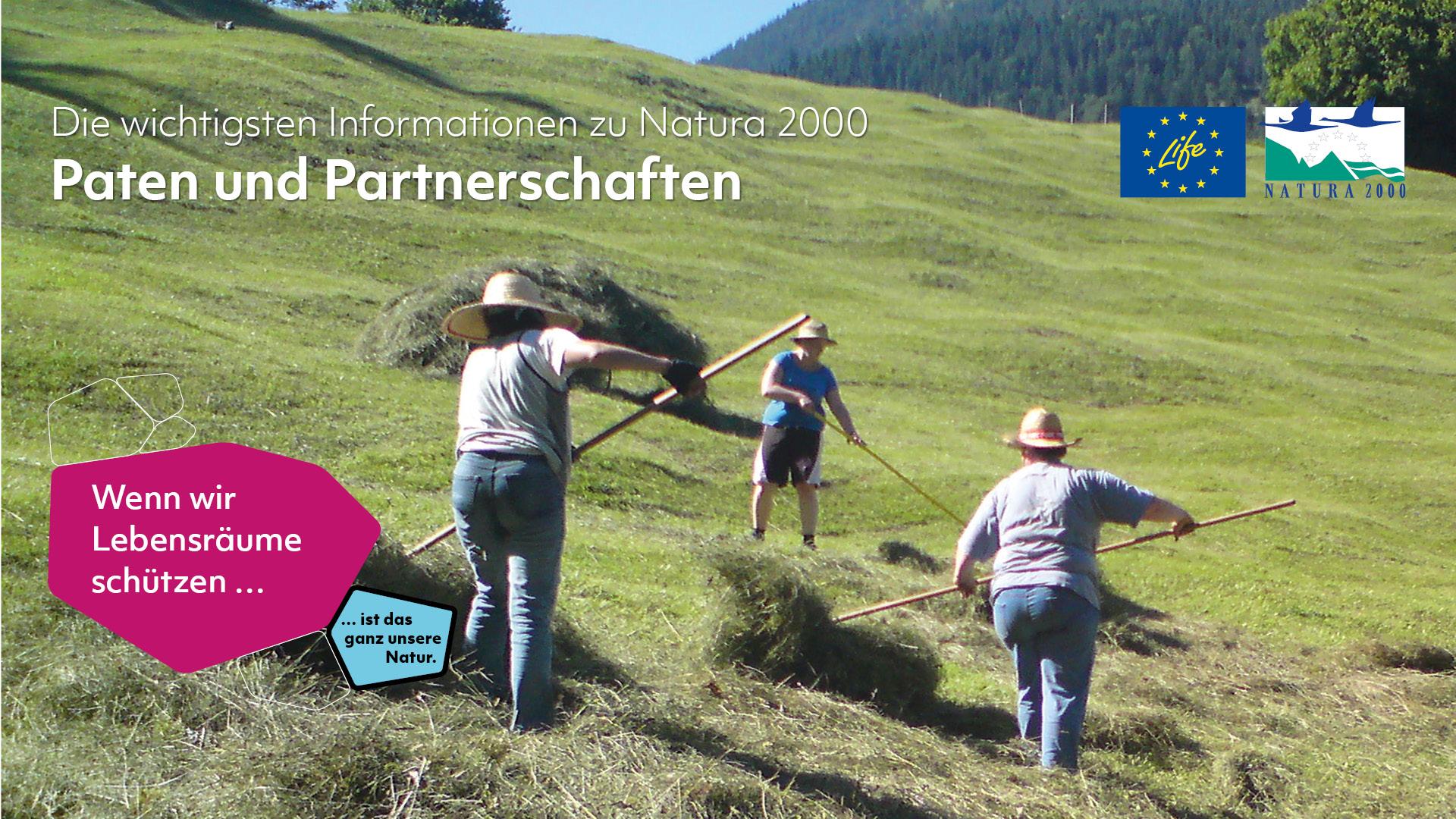 """Drei Personen wenden auf einer Wiese in Hanglage zum Trocknen ausgelegtes Heu mit langen Stöcken. Darüber steht: Die wichtigsten Informationen zu Natura 2000 - Paten und Patenschaften. Unten links sind zwei Waben zu sehen, eine mit violettem Hintergrund und der Aufschrift """"Wenn wir Lebensräume schützen..."""" und eine mit blauem Hintergrund und der Aufschrift """"... ist das ganz unsere Natur."""" Oben rechts sind die Logos des LIFE-Programms und von Natura 2000 zu sehen."""