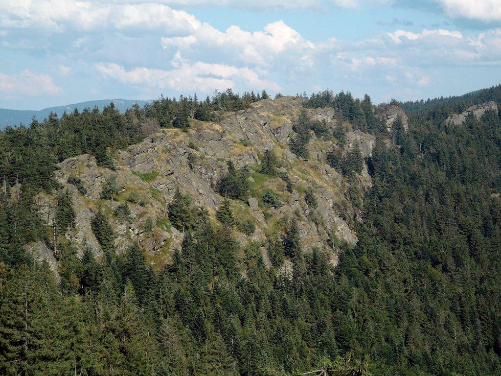Ein unbewaldeter Höhenrücken befindet sich in der Bildmitte, der von dichtem Nadelwald umgeben ist.