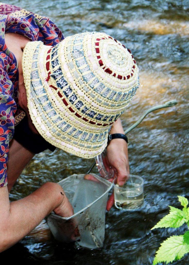 Eine Umweltpädagogin sammelt mit einem Kescher Kleinstlebewesen in einem Bach und gibt sie in eine Becherlupe.