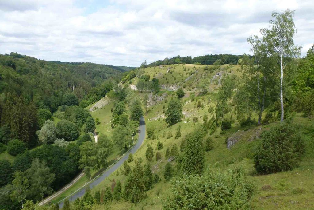 Ein grüner Hang, auf dem einzelne Bäume stehen fällt steil zu einer durch das Tal führenden Straße hinab.