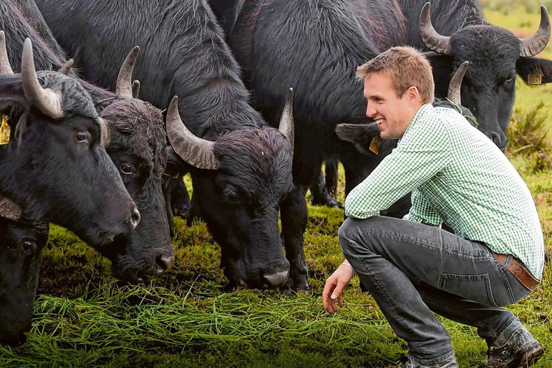 Schwabenbüffel – Einzigartige Spezialitäten aus dem Donauried
