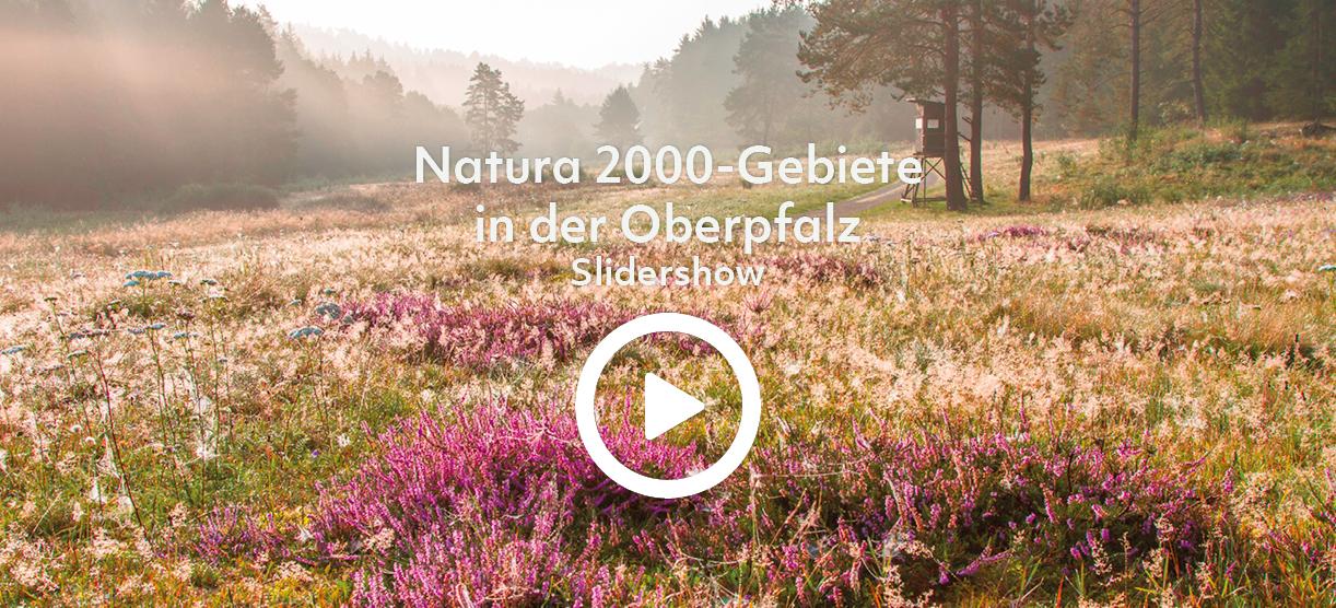 Slideshow Natura 2000-Gebiete in der Oberpfalz