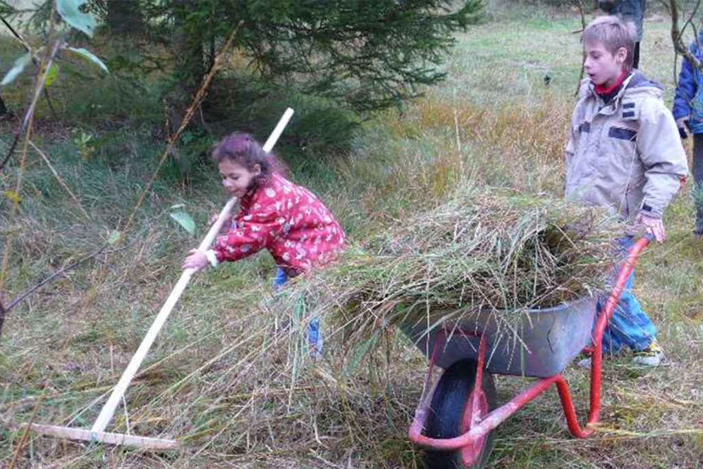 Kinder arbeiten mit Rechen und Schubkare auf der Wiese.