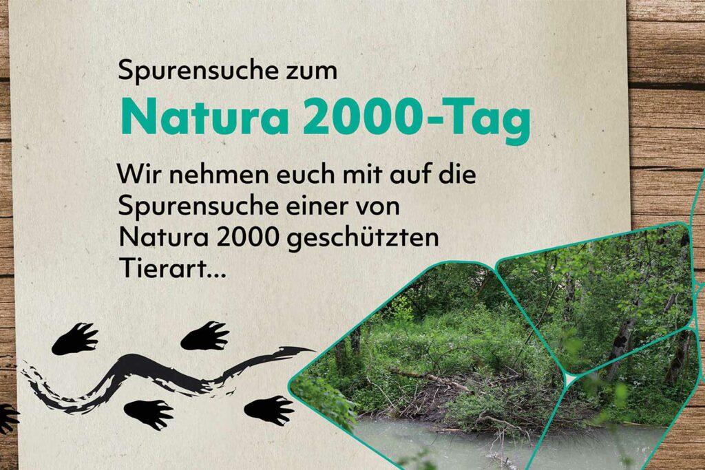 """Ein Bachufer mit Biberburg, darüber die Aufschrift """"Spurensuche zum Natura 2000-Tag. Wir nehmen euch mit auf die Spurensuche einer von Natura 2000 geschützten Tierart..."""""""
