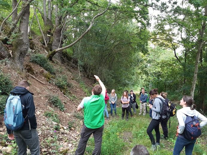 Ein Exkursionsleiter zeigt Teilnehmern etwas in einem Waldstück