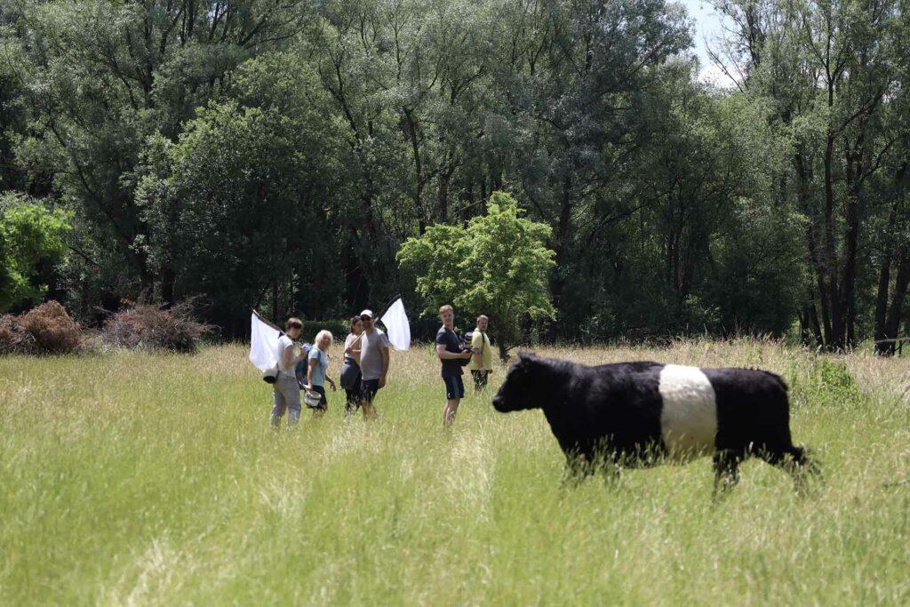 Drehteam wandert durch die Mühldorfer Kiesgrube.